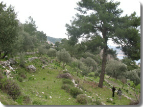 Turunc Land for sale